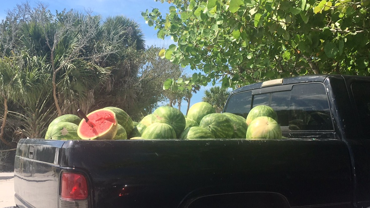 Bellezza Corner watermelons on the beach